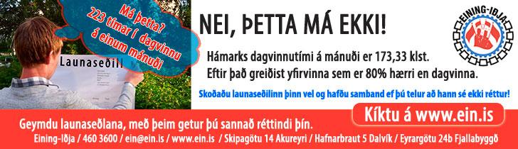 Eining-Iðja