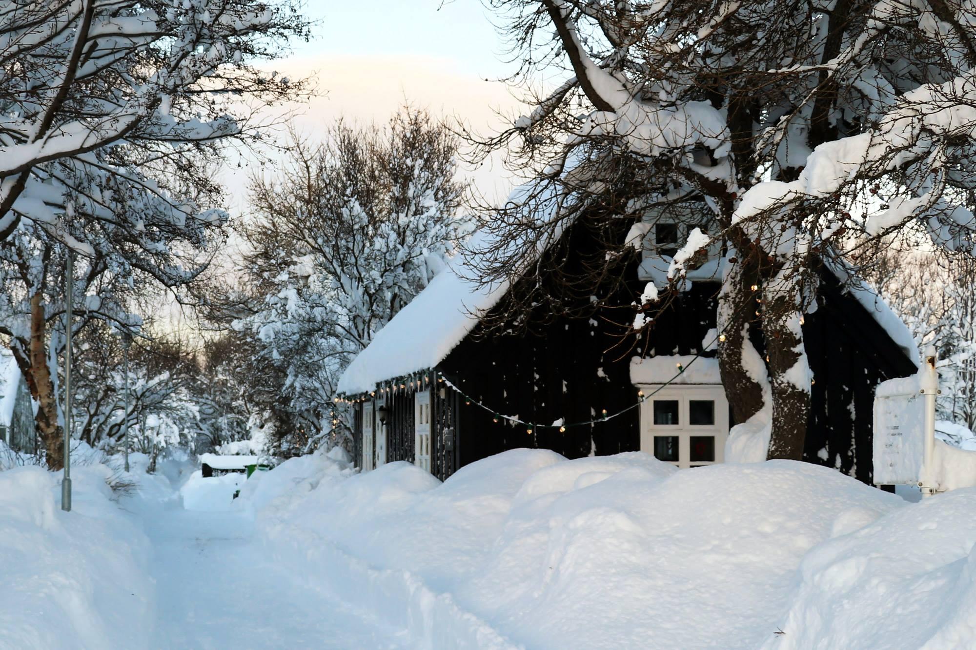 Aðventan í Listigarðinum – Jólasveinar og kakó