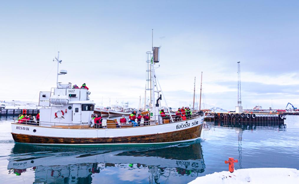 Tók aðeins 15 mínútur að finna fyrsta hval ársins á Húsavík