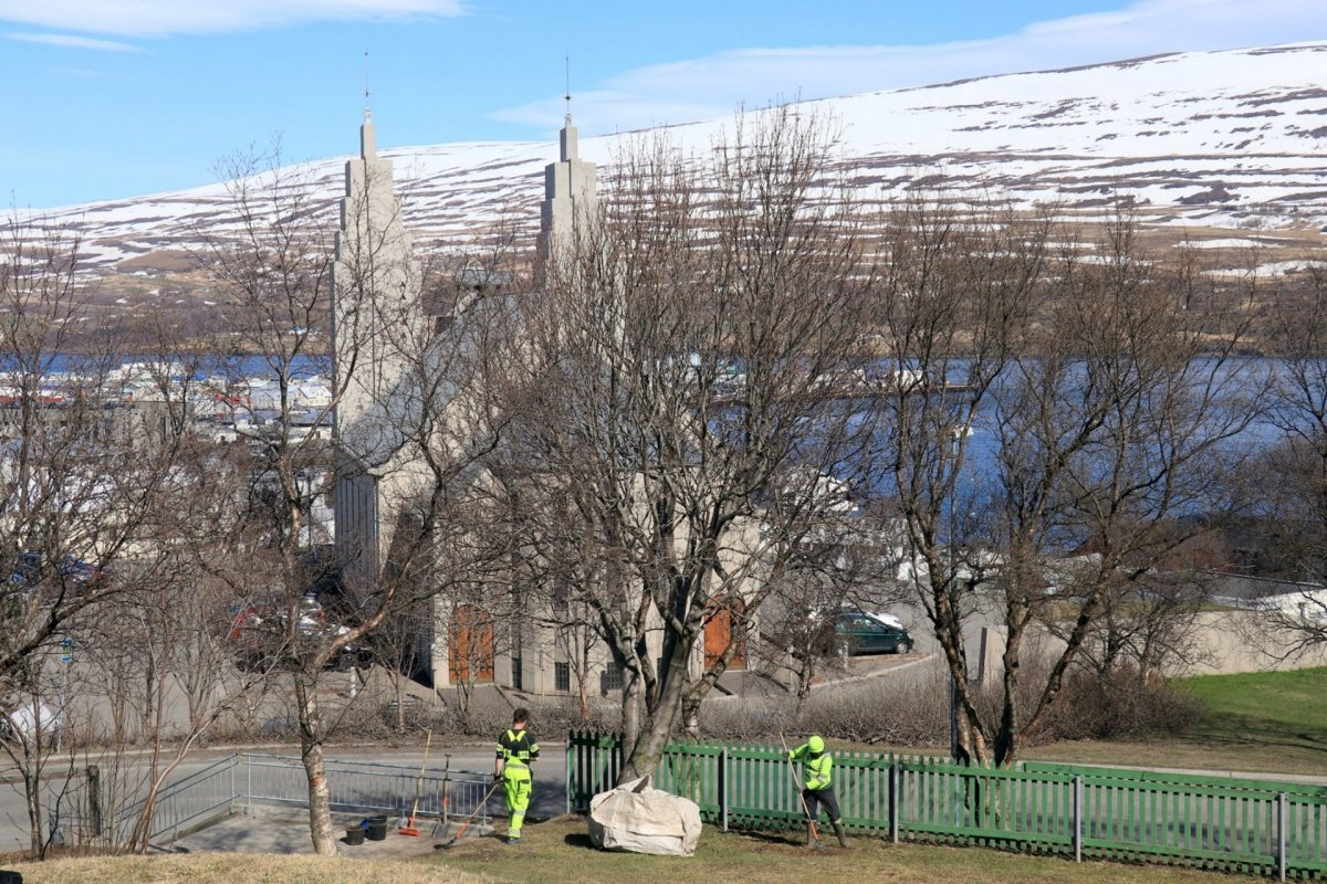 Áætlað að Akureyringar hafi tínt um tvö tonn af rusli